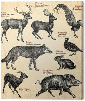 Canvastavla Djur av skogen