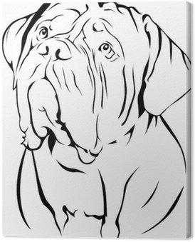 Canvastavla Dogue De Bordeaux porträtt