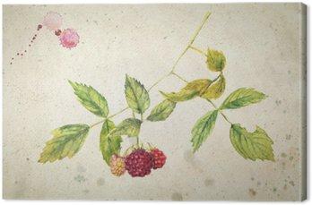 Canvastavla En gren av hallon - realistiskt akvarellmålning. På vintage beige bakgrund.