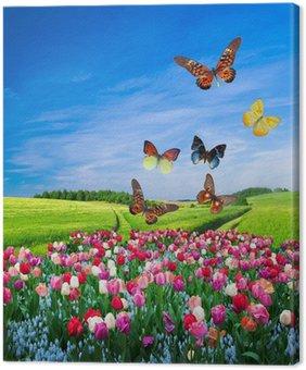 Canvastavla Fält av färgglada blommor och en fjäril grupp