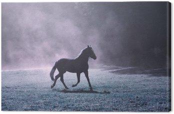 Canvastavla Fantasi morgon solljus äng med brun häst och purpurfärgad dimma.