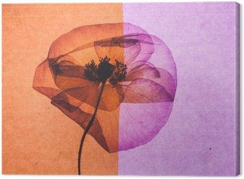 Canvastavla Fin blomma