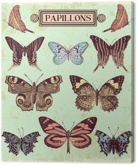 Canvastavla Fjärilar