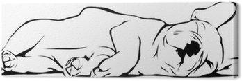 Canvastavla Fransk bulldogg baby Sova