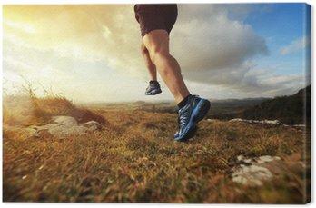 Canvastavla Friska trail run