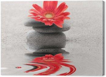 Canvastavla Galets et reflet gerbera zen