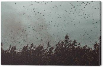 Canvastavla Gäng Fåglar som flyger nära sockerrör i en mörk Sky-vintage stil svart och vitt