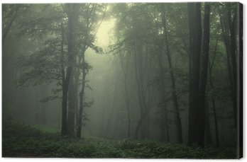 Canvastavla Grön skog efter regn