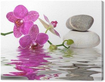 Canvastavla Helt enkelt vackra orkidéer