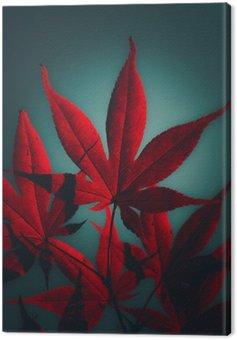 Canvastavla Japansk lönnträd i crimson