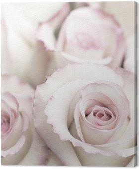 Canvastavla Ljus Rosa rosor