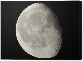 Canvastavla Månen