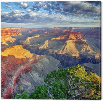 Canvastavla Morgonljus vid Grand Canyon