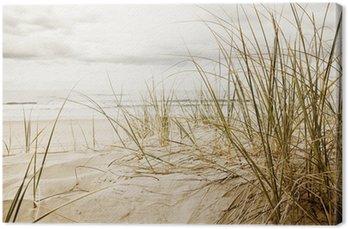Canvastavla Närbild av en högt gräs på en strand under molnig säsongen