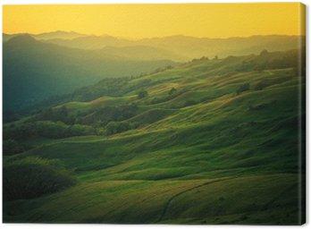 Canvastavla Norra Kalifornien landskap
