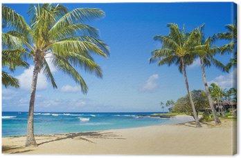 Canvastavla Palmer på sandstranden i Hawaii