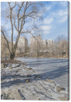 Canvastavla Parco New York