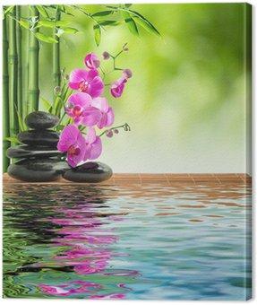 Canvastavla Rosa orkidé svart sten och bambu på vatten