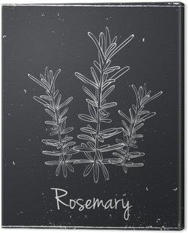 Canvastavla Rosemary örter och kryddor.