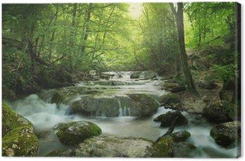 Canvastavla Skog vattenfall