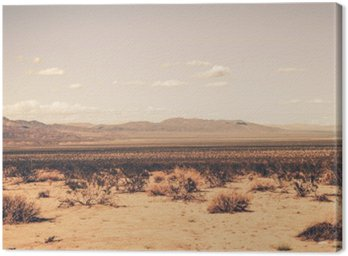 Canvastavla Southern California Desert
