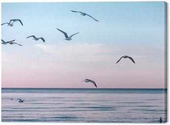 Canvastavla Stor grupp flock måsar på havs sjövatten och flyger i himlen sommar solnedgång, tonas med instagram retro hipster filter, film effekt