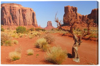 Canvastavla Stora klippformationer i Navajo Park Monument Valley