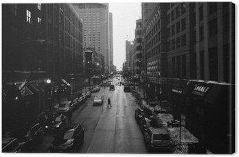 Canvastavla Svartvita Chicago gator