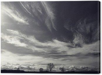 Canvastavla Svartvitt foto höst landskap