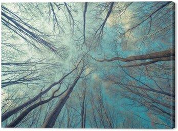 Canvastavla Träd Web Bakgrund