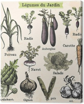 Canvastavla Trädgårds grönsaker
