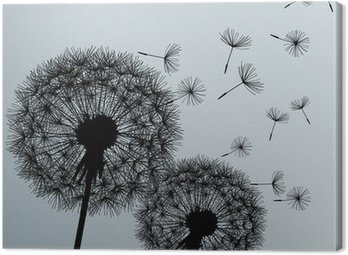 Canvastavla Två blommor maskrosor på grå bakgrund