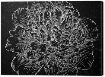 Canvastavla Vacker svart och vit pion blomma isolerad på bakgrund. Handritade konturlinjer och stroke.