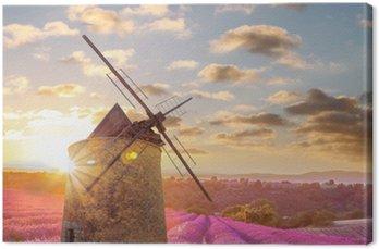 Canvastavla Väderkvarn med Levander fält mot färgrik solnedgång i Provence, Frankrike