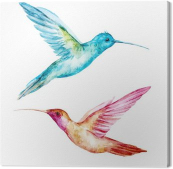 Canvastavla Vattenfärg colibri fågel