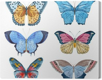 Canvastavla Vattenfärg vektor fjärilar