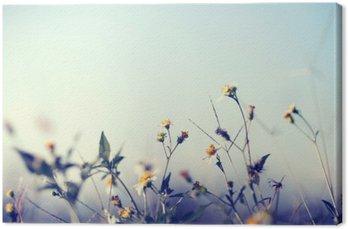 Canvastavla Vintage bild av naturen bakgrund med vilda blommor och växter