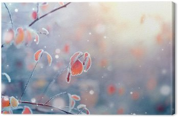 Canvastavla Vinter natur bakgrund. Frysta gren med blad närbild