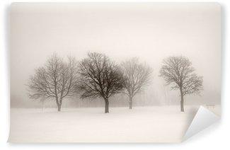 Carta da Parati in Vinile Alberi di inverno in nebbia