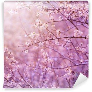 Carta da Parati in Vinile Albero in fiore di ciliegio