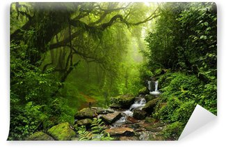 Carta da Parati Autoadesiva Foresta Nepal