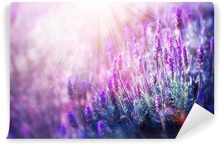 Carta da Parati Autoadesiva Lavanda fiori di campo. Crescita e fioritura della lavanda