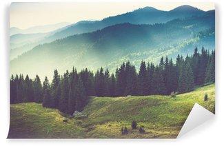 Carta da Parati in Vinile Bella estate paesaggio di montagna