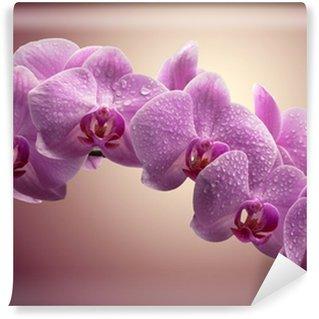 Carta da Parati in Vinile Bouquet di orchidee magenta