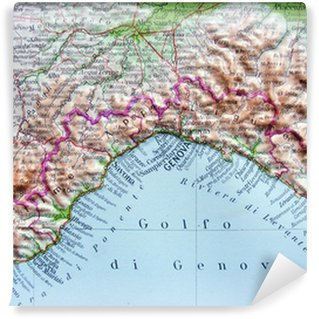 Carte da parati cartina geografica pixers viviamo per for Carta da parati cartina geografica