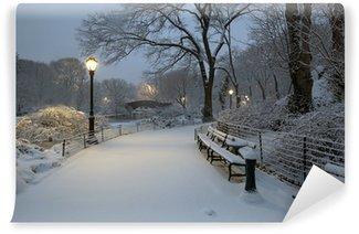 Carta da Parati in Vinile Central Park in tempesta di neve