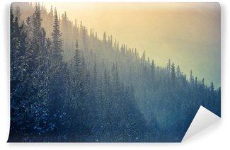 Carta da Parati in Vinile Colorado Winter Time