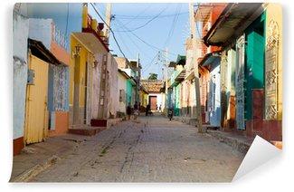 Carta da Parati in Vinile Colori Trinidad