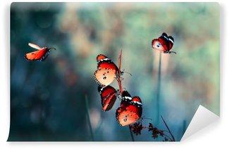 Carta da Parati in Vinile Farfalla