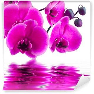 Carta da Parati in Vinile Fiori di orchidea in primo piano con la riflessione in acqua